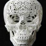 CraniaAnatomicaFiligre-front